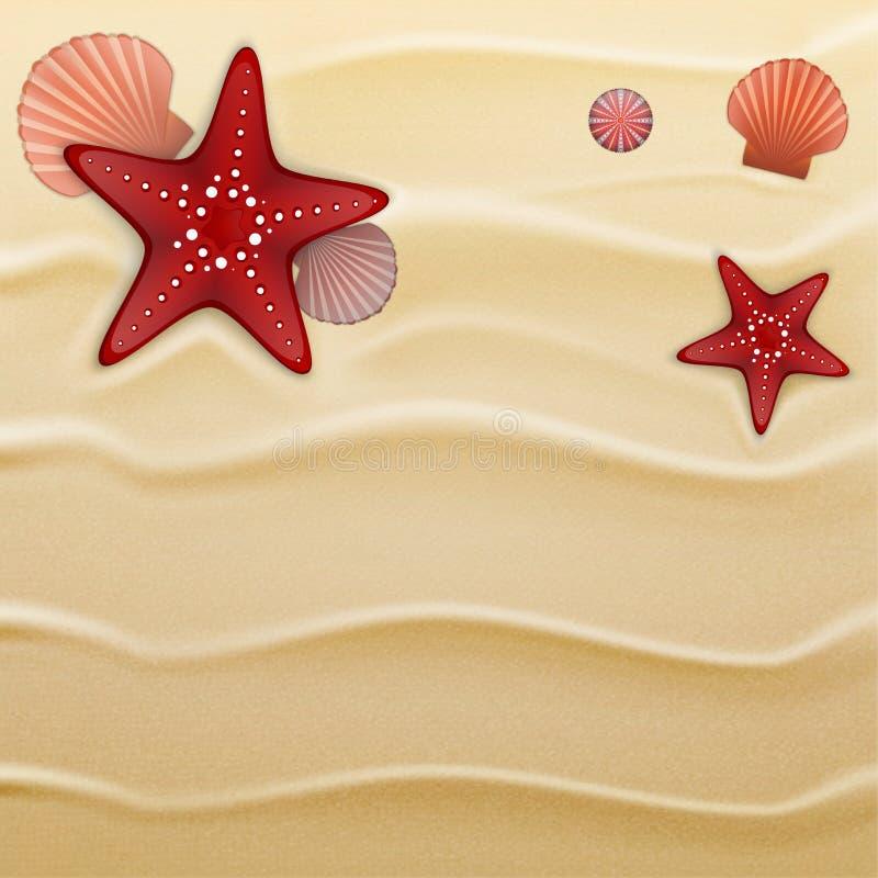 Seashells on sand, background royalty free illustration