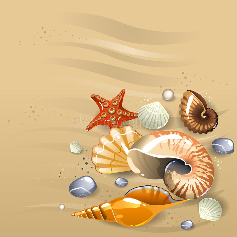Seashells on the sand. Illustration of seashells on the sand royalty free illustration