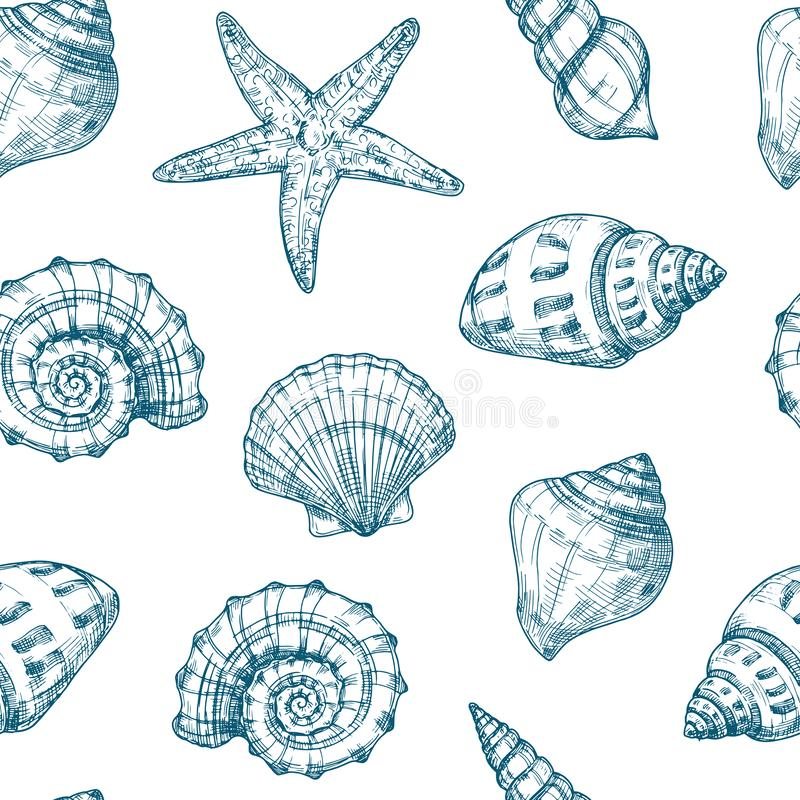Seashells seamless pattern. Sea shell summer ocean texture. Nautical starfish repeating vector vintage sketch background stock illustration