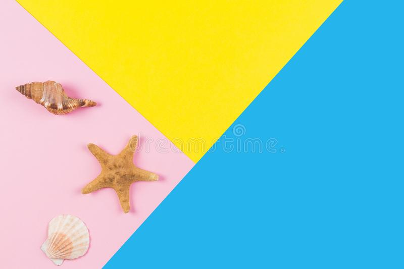 Seashells and starfish on blue and yellow background. Vacation, travel, summer concept royalty free stock photography