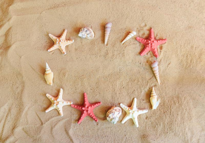 Seashells and starfishes on sand beach royalty free stock photos