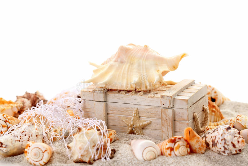 Seashells and treasure chest. Concept of holiday, beach and summer royalty free stock photography