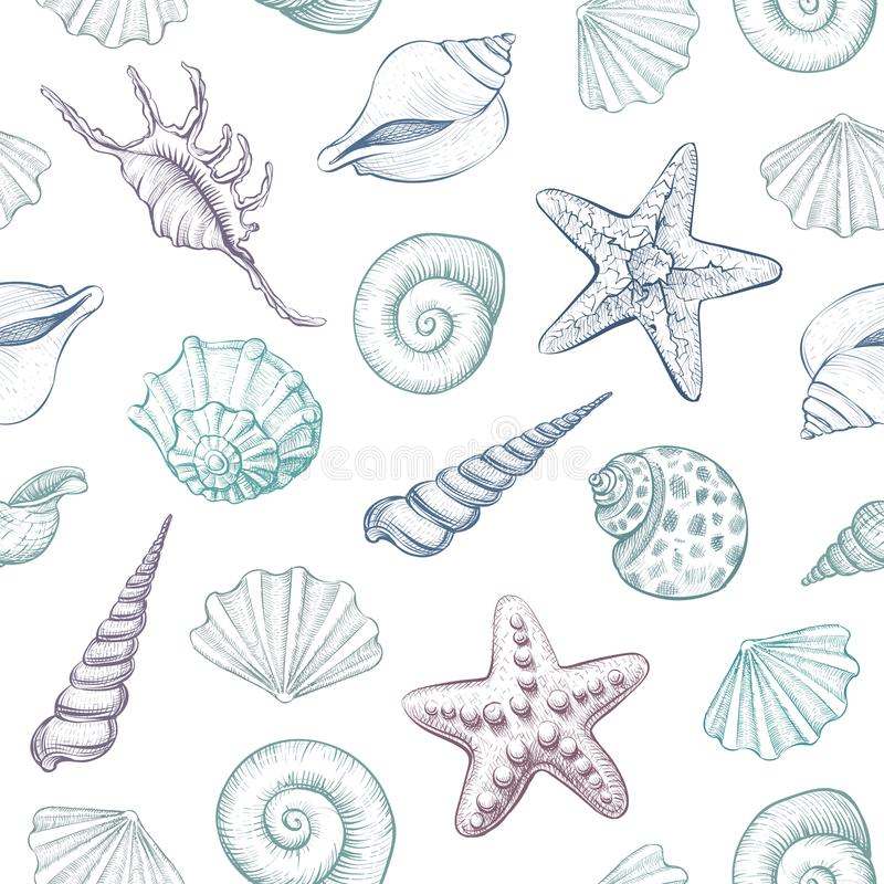 Seashells vector seamless pattern. Hand drawn marine illustrations of engraved line. Colorful background vector illustration