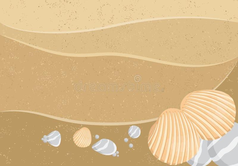 seashells wektor royalty ilustracja