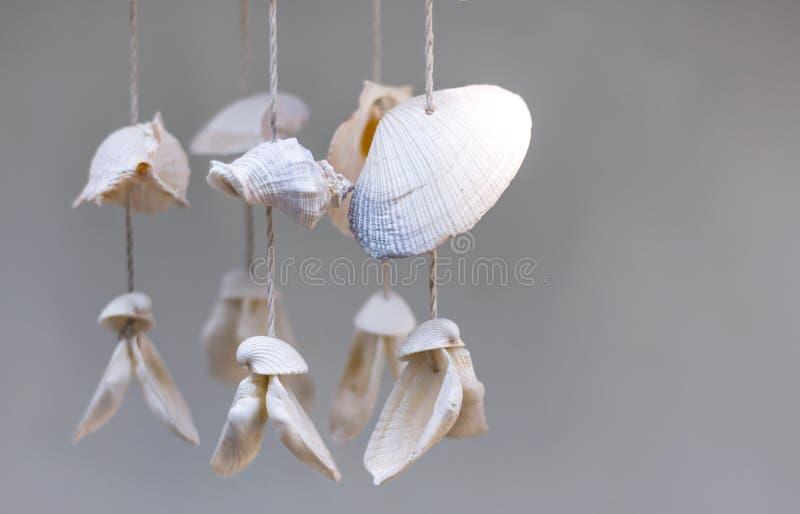 Seashells wiesza na białym tle Seashell wisząca ozdoba jest handic fotografia stock
