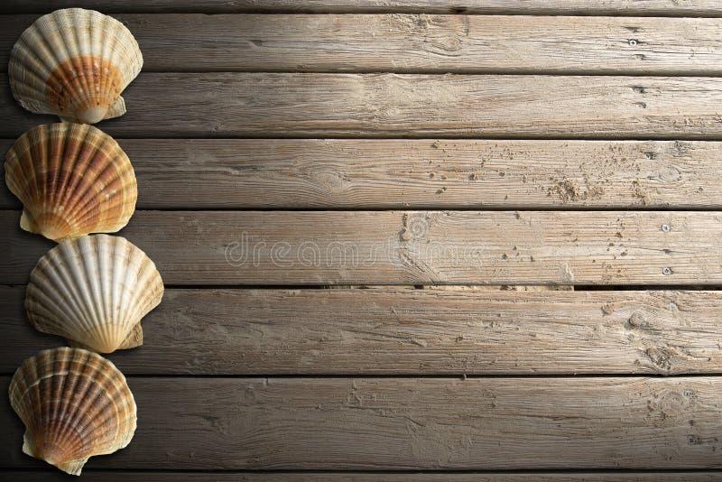 Seashells on Wooden Boardwalk with Sand royalty free illustration
