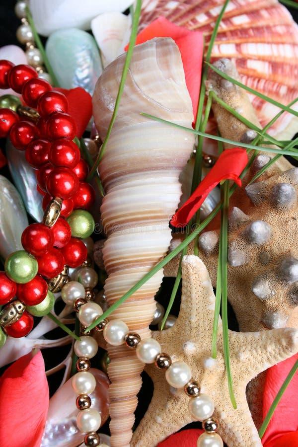 Seashells y jewelery fotografía de archivo