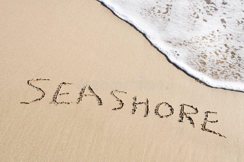 Download Seashore stock image. Image of foam, nature, scene, chilling - 19381911
