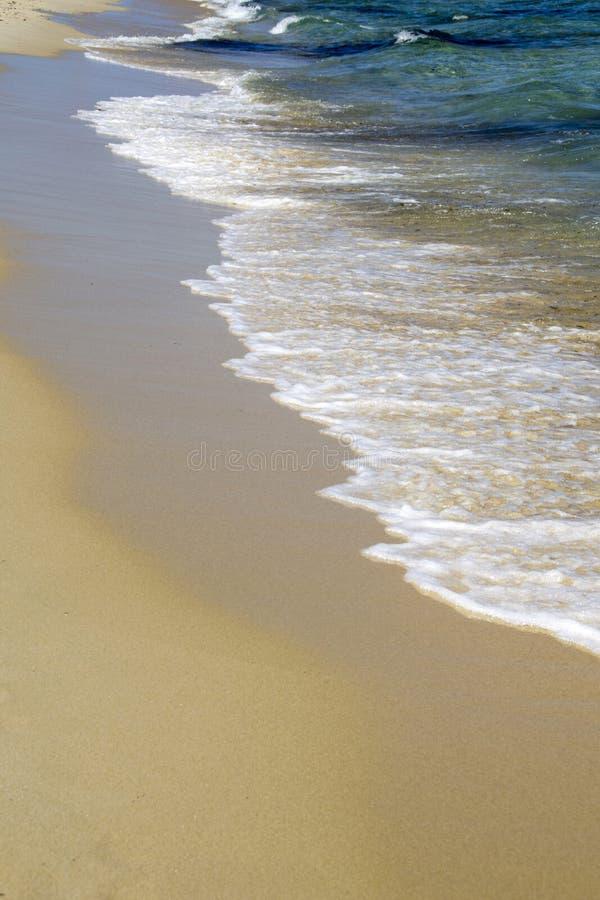 Free Seashore Royalty Free Stock Photos - 32239958