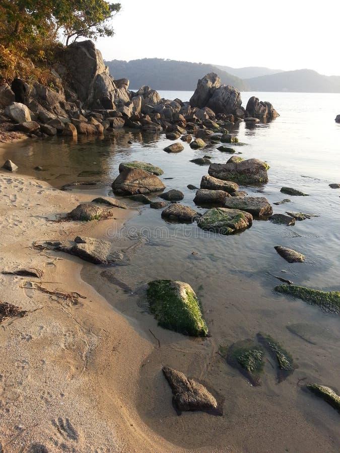 seashore стоковое изображение rf