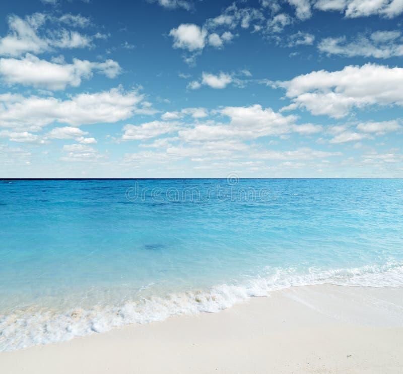 seashore royaltyfri fotografi