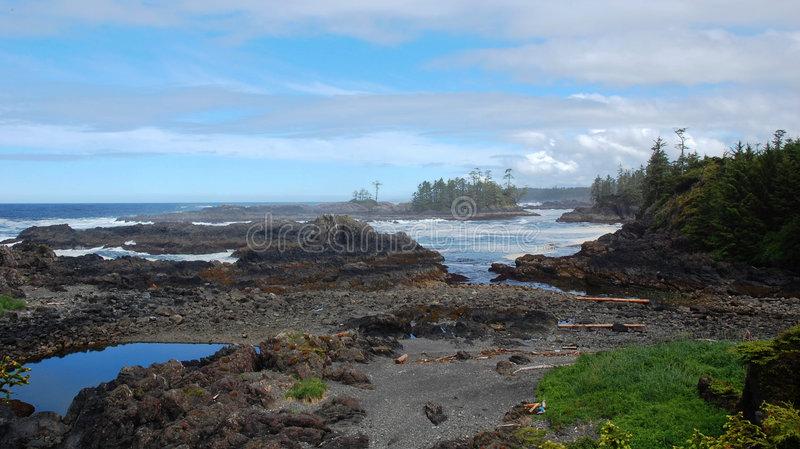 Seashore imagem de stock
