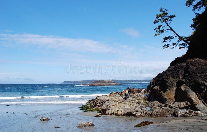 seashore arkivfoto
