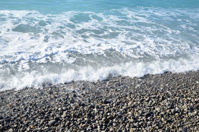 seashore images libres de droits
