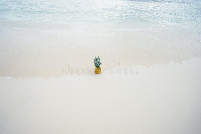 Ананас в середине Seashore стоковые изображения