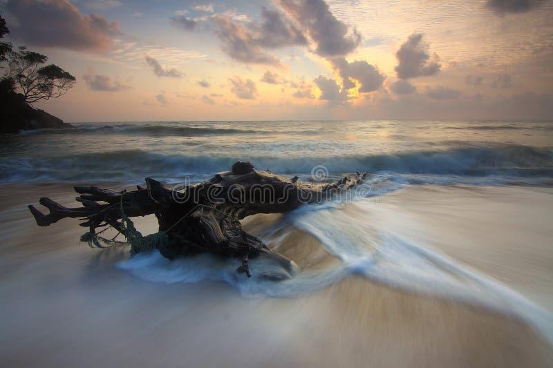 Фотоснимок Seashore стоковое изображение rf