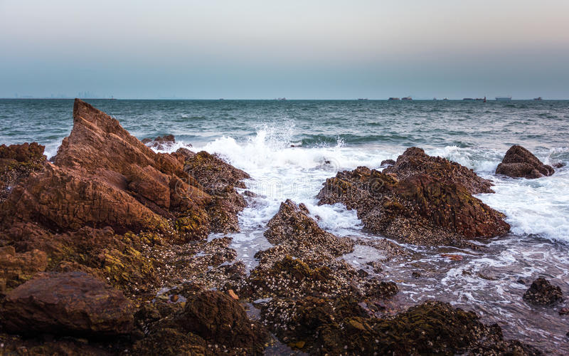 seashore photo stock