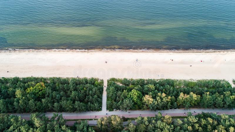 Seashore and green trees from top view stock images