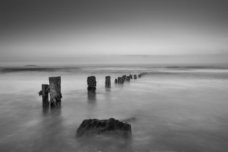 Seashore Groynes royalty free stock photography