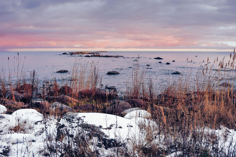 seashore lodowa denna zima zdjęcie royalty free