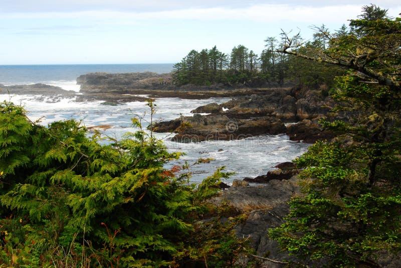 Seashore nos países da costa do Pacífico fotografia de stock