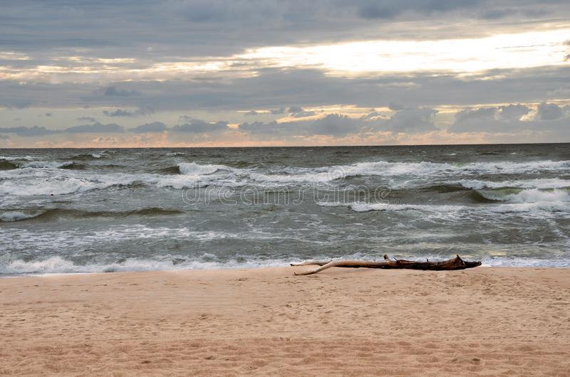 Seashore sky orange and blue tones clouds and sea waves beautiful nature bright sunset log sea shore drift wood on sand. Seashore sky orange and blue tones stock photography