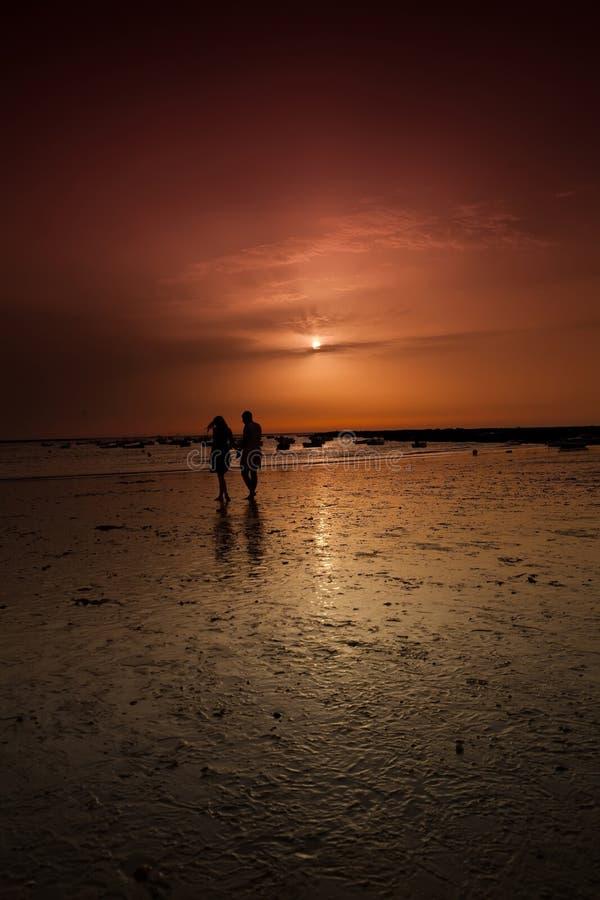 Download Seashore sunset stock photo. Image of beach, sandy, coast - 26000396