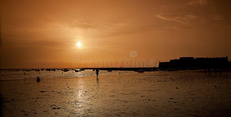 Download Seashore sunset stock photo. Image of nobody, ocean, dusk - 26000420