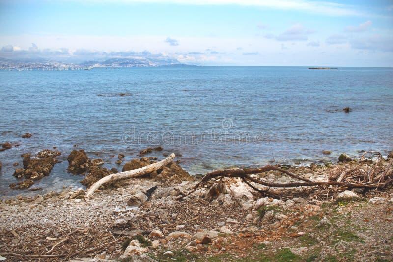 Seashore view on sea with drift wood stock photo