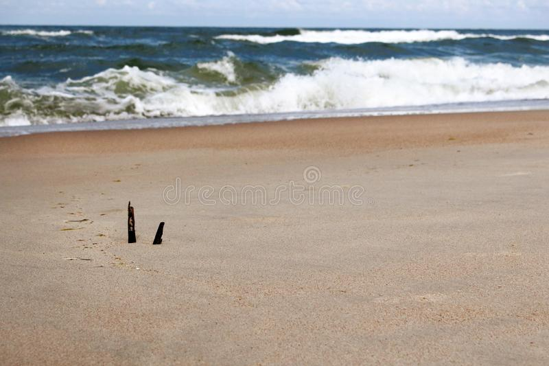 Seashore view on sea waves and sand beach with drift wood and feather royalty free stock photos