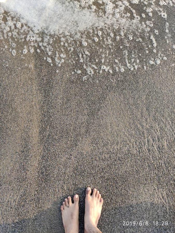 seashore stock afbeeldingen