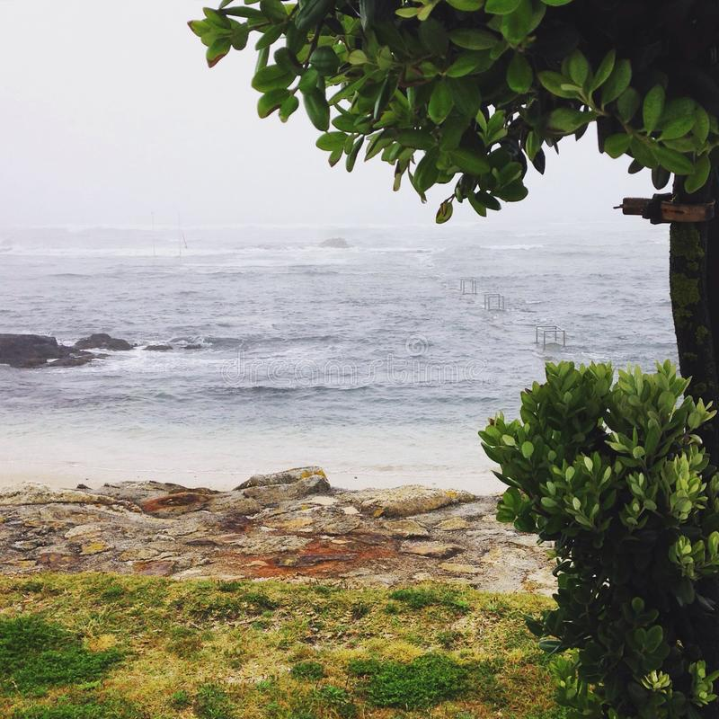 seaside fotografia stock