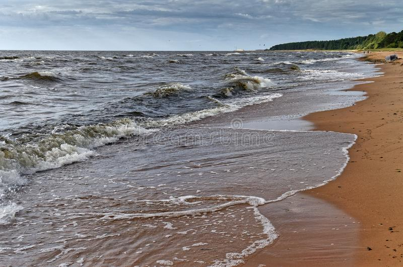Seaside. Baltic seaside at summers day stock photography