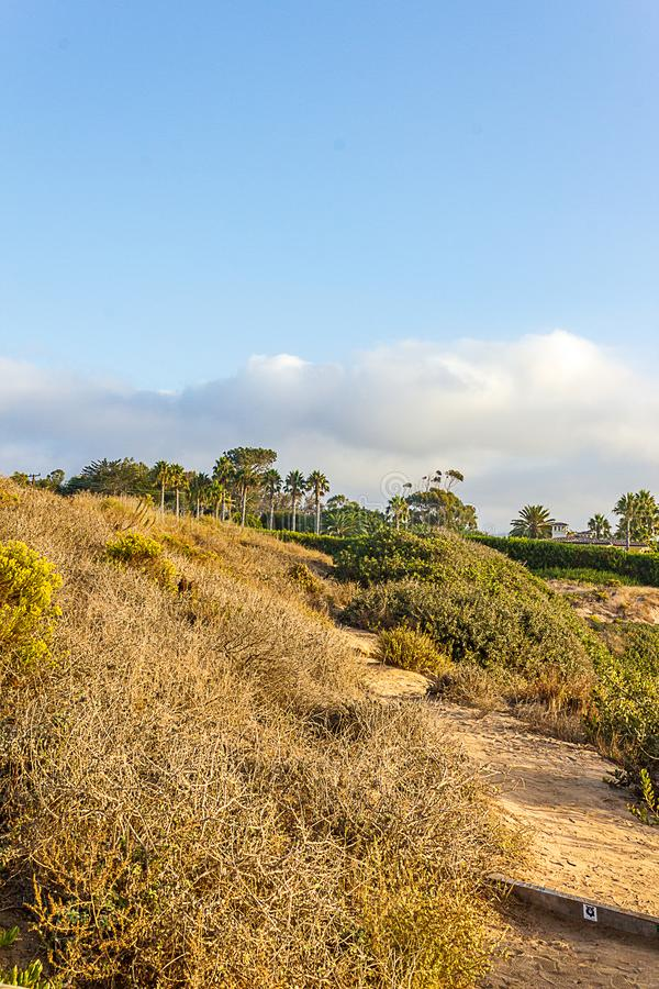 Seaside cliff path through natural plant area, leading toward road with cultivated gardens and palm trees stock images