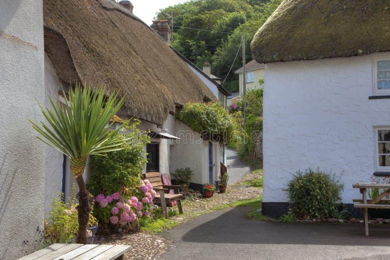 Seaside cottages, Devon stock images