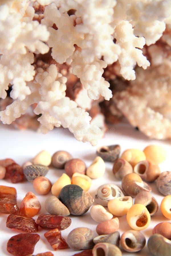 Seaside keepsakes stock photo