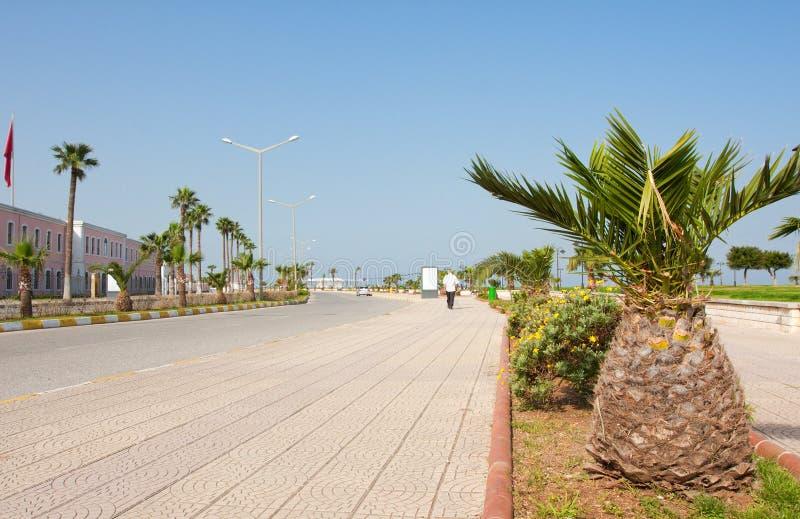 Download Seaside landscape stock photo. Image of walking, plant - 24327188