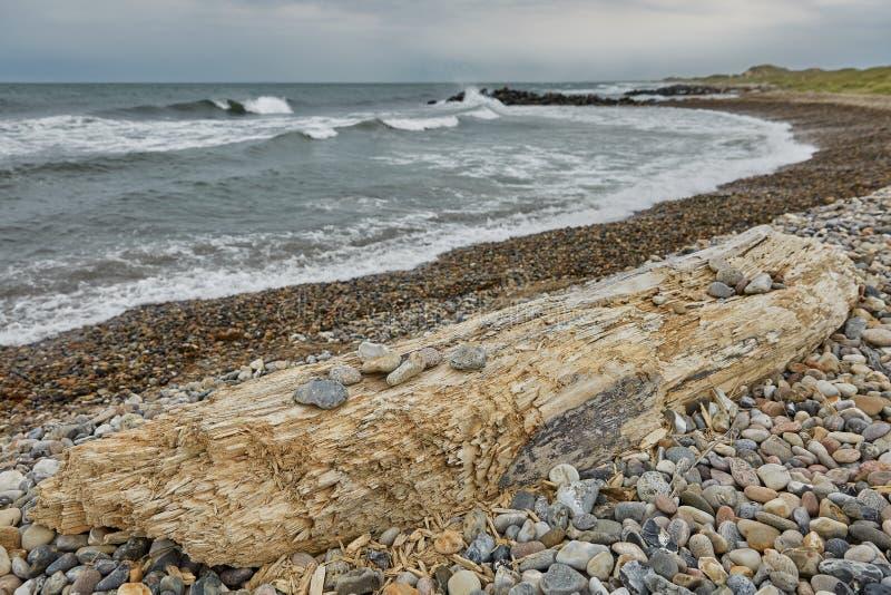Seaside and landscape near town of Skagen in Denmark.  stock photos