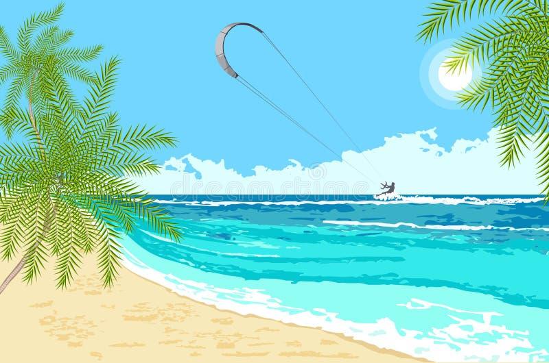 Seaside landscape with sea kite royalty free stock photo