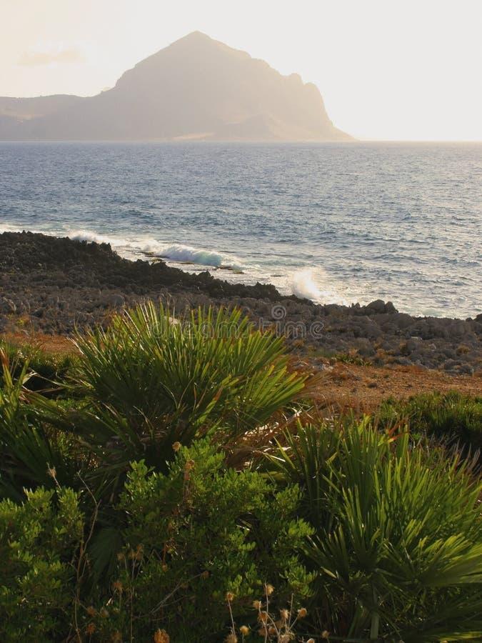 Download Seaside mountain sunset stock photo. Image of trees, green - 12585206