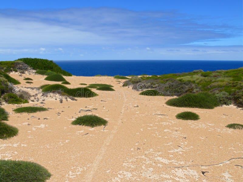 Seaside Of N.P. Nullarbor. Royalty Free Stock Photography