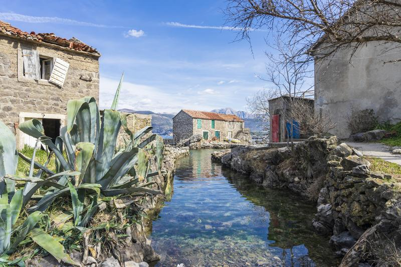 Seaside rustic landscape, Adriatic coast in the suburbs of Tivat. Seaside rustic landscape, old houses surrounded by exotic plants on the Adriatic coast in the royalty free stock photography