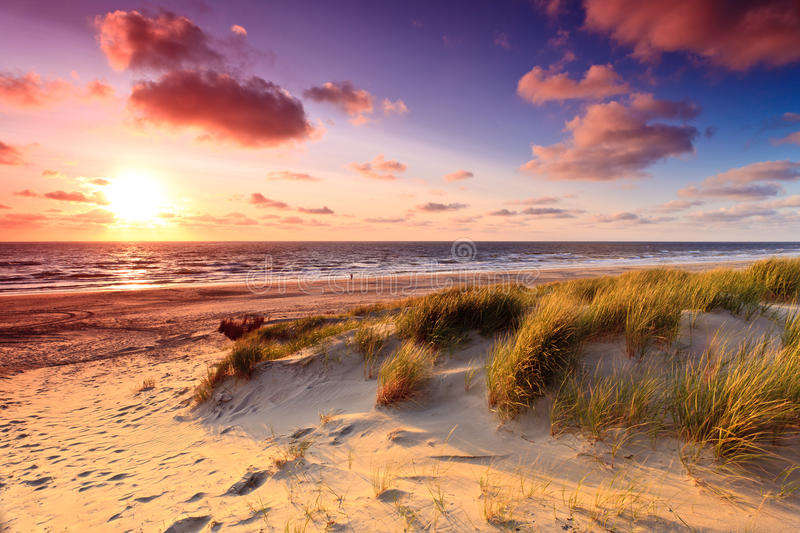Seaside with sand dunes at sunset stock photos