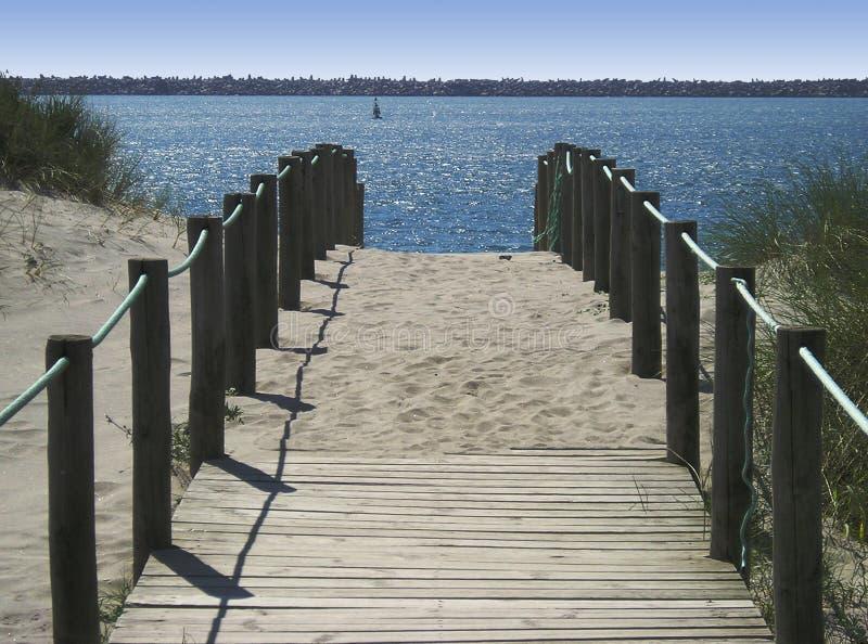 Download Seaside walk stock photo. Image of coastline, sand, seaside - 770444