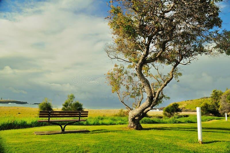 Download Seaside wooden bench stock image. Image of winter, quiet - 32339593