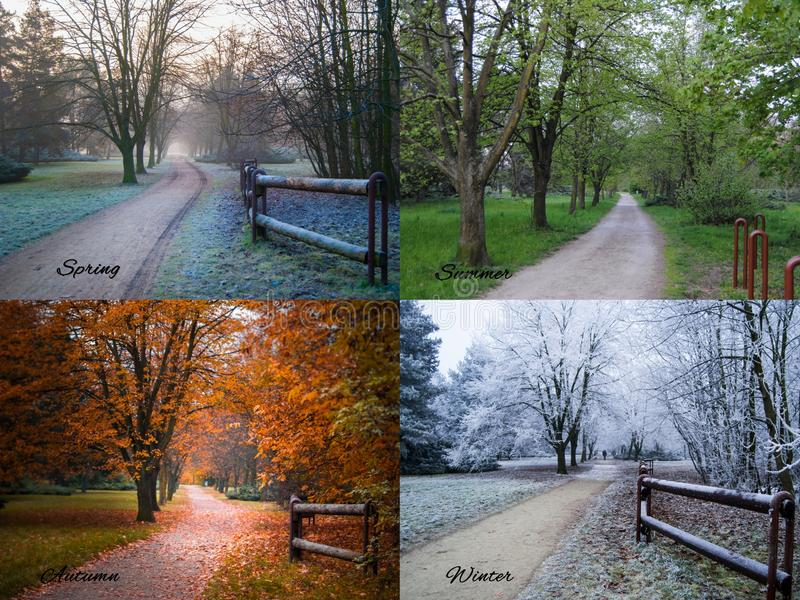 Season collage royalty free stock images