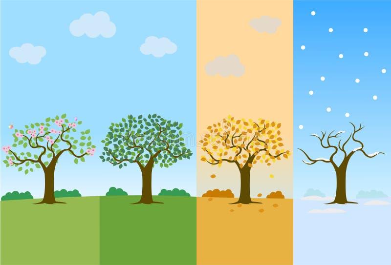4 Season. Spring, summer, autumn and winter season vector illustration