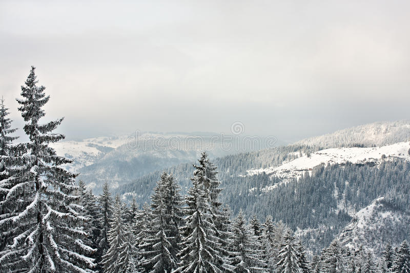 Season winter outdoor landscape ambient. Season winter outdoor landscape in nature ambient royalty free stock photography