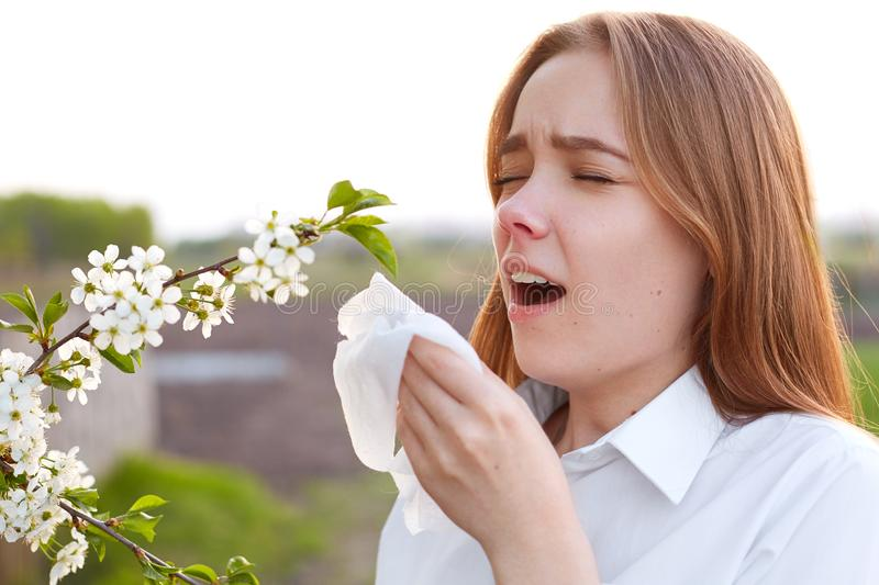 Seasonal allergy. Pretty young female blows nose and sneezes, stands in front of blooming tree, being allergic to blossom, holds h stock images