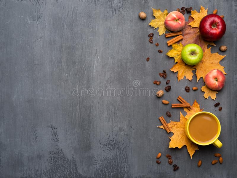 Seasonal autumn background. Frame of colorful maple leaves, peaches and apples over grey. Seasonal autumn background. Frame of colorful maple leaves, peaches stock photo